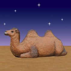 """Resting Camel-Add the Resting Camel to your Nativity and share the celebration of Christmas with your community. This large Resting Camel is for the 6 foot scale Nativity set and is constructed of fiberglass and hand painted.   Size L70"""" W27.25"""" H45"""" Weight  70 lbs. Fiberglass construction Indoor or outdoor use  (see Product Care for outdoor use) Item #31118 Our Price: $1,699.00 Shipping weight: 223 lbs Shipping Dimensions: L 94"""" W""""35 H50"""""""