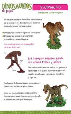 30 Mejores Imágenes De Tipos Dinosaurios Dinosaurios Tipos De Dinosaurios Dinosaurios Animados