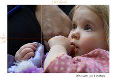 Photoshop Elements Tutorial: Aspect Ratio and Print Size