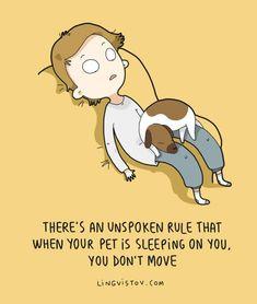 charming life pattern: unspoken rule #dog #dogs #pet