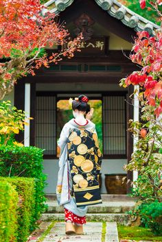 【Maiko,November 20, 2016】 Maiko is Toshisumi.  Shooting location is Seiraiin Temple. Photo by TENUGUI-MAN.