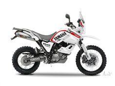 Off Road Adventure, Adventure Tours, Custom Motorcycles, Custom Bikes, Enduro Motocross, Motosport, Bmw, Toys For Boys, Boy Toys
