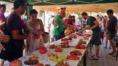 Segorbe, capital del tomate tradicional