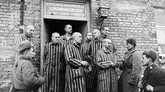 Liberated prisoners of Auschwitz speak with Soviet troops.
