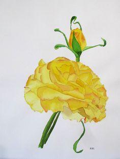 Yellow Rose - Watercolour