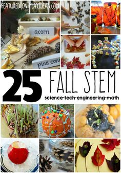 Fall STEM Ideas for Kids