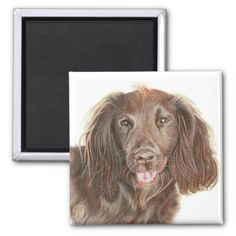 Cute Working Cocker Spaniel Dog Painting Magnet clumber spaniel puppy, welsh springer spaniel, crocker spaniel #cockerspaniels #cockerspanielnation #cockerspanielsrule, back to school, aesthetic wallpaper, y2k fashion Clumber Spaniel Puppy, Black Cocker Spaniel Puppies, Welsh Springer Spaniel, American Cocker Spaniel, Working Cocker, Dog Paintings, Aesthetic Wallpapers, Dog Breeds, Lion Sculpture