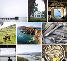 Make a moodboard in under a minute without photoshop maketrays.com #maketrays #tomalesbay