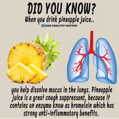 Pineapple Juice helps to dissolve mucus in the lungs and can be a great alternative to cough syrup. – Bromelain and other enzymes found in pineapple, work great for clearing and breaking down mucus, with their anti-inflammatory properties. Nutrition Sportive, Sport Nutrition, Nutrition Education, Health And Nutrition, Health And Wellness, Health Fitness, Nutrition Tips, Nutrition Month, Nutrition Quotes