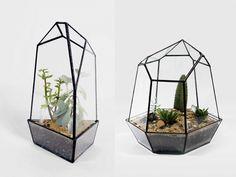 Score + Solder terrarium. Beautiful terrariums,  terrarium art, terrarium container, succulent art, cactus art, green design, plant display, plant art, sustainable art