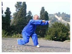 TongBiQuan Wushu - Shaolin Zhou Quan Tui - Çin yumruk sanatının bilgi sayfalarına hoşgeldiniz: Bacaklar stil Shaolin keşiş Zhou Tong