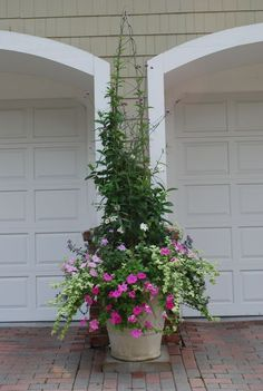potted plant with tall trellis obelisk outdoor spaces