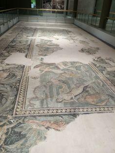 Hatay Archeology Museum - Mosaics