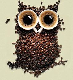 owls and coffee - two of my favorite things! -- 1f66b19df92b904e391aa4b2d260e640.jpg (703×772)