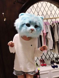 Hat cat. Cat hat.