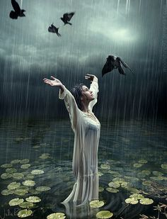 A rain drenched cleansing always renews my soul and makes me want to take flight with the birds.