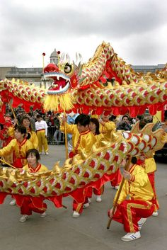 This is a celebration of the Chinese New Year. I find this interesting, because they don't celebrate it on January but usually during February. They celebrate by making large Chinese dragons. Dragon Project, Dragon Puppet, Oriental, New Years Traditions, Dragons, Besties, Dragon Dance, Lion Dance, Statues