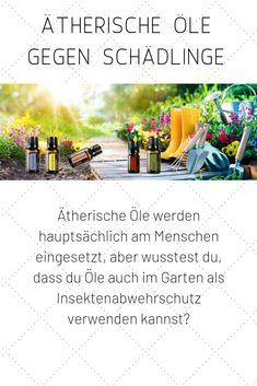 Ätherische Öle werden hauptsächlich am Menschen eingesetzt, aber wusstest du, dass du Öle auch im Garten als Insektenabwehrschutz verwenden kannst? Mit einem selbst hergestellten Pflanzenschutzmittel mit ätherischen Ölen kannst du die nützlichen Aromen direkt auf befallene Pflanzen auftragen und so den Einsatz synthetischer Insektizide und Fungizide sowie ihre Nebenwirkungen vermeiden #doterraöle #doterradeutsch #ungeziefer #schädlinge #insekten #ätherischeöle #garten #gartenarbeit Essential Oils, Health, Tips, Plants, Gardening, Knowledge, Cleaning Recipes, Crop Protection, Useful Life Hacks