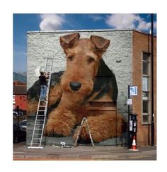 Airedale mural