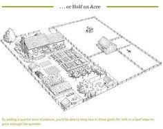 half an acre homestead layout