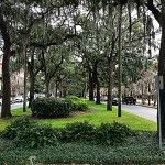 Savannah is known as America's first planned city. General James Oglethorpe laid the city out in a series of grids that allowed for wide ope...