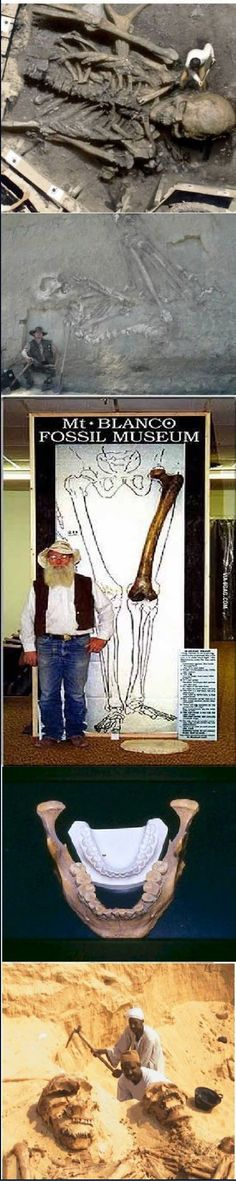 Just some bones... Wait WHAT?