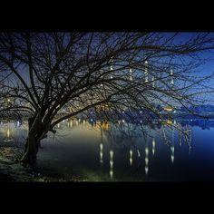 #adana #bestcitypics #foap #citybestpics #citylights #kadraj_arkasi #ig_today #aniyakala #ig_splash #ig_travel #ig_worldclub #anadoludahayat #anadolufotograf #anafot #vscocam #kadraj_arkasi #canon #lovefromturkey @turkishairlines #allshotsturkey #instalike #mosque #reflection #lake by kcellat