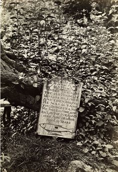 Mrs. Keyte of Blockley, Gloucestershire had a pet trout that would eat worms from her hand. When it died in 1855, she erected a tombstone in its honor. That tombstone remains one of the most popular tourist attractions in Blockley. And it's perhaps the only tombstone for a trout in…