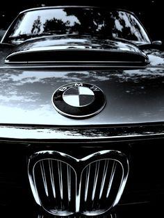 BMW Kidney Grille old-school