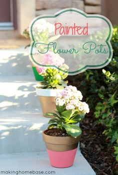 Painted Flower Pots: diy Summer potted plant project.