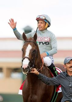'Chrome,' Beholder Weighing Options after PC - Barn CC on the Del Mar backside had a party-like atmosphere Sunday morning—with a large group of connections and fans huddled around the 2014 Horse of the Year's stall—following what Sherman called the best performance of his career.