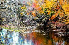 Fall in Hunterdon County, NJ