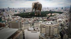 #Shinjuku #camillaurendesign #Tokyo #Tokyo Metropolitan #elephant #digitalart