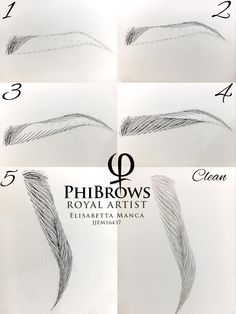 Microblading Practice, Step x Step (Phibrows e. Mircoblading Eyebrows, Sparse Eyebrows, Tweezing Eyebrows, How To Draw Eyebrows, Permanent Makeup Eyebrows, Eyebrow Makeup, Bold Brows, Phibrows Microblading, Eyebrow Design