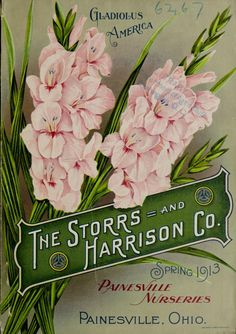 The Storrs and Harrison Co. -Painesville Nurseries : Catalogue spring 1914 Catalogue no. 2 : spring 1913