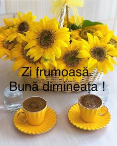 Good Morning, Good Day, Buen Dia, Bonjour, Bom Dia