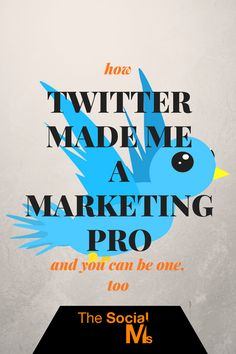 To market successfully, I had to learn Twitter. Twitter made me a marketing pro and enabled me to grow traffic for any business without advertising it