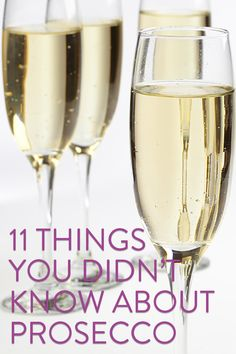 11 Things You Didn't Know About Prosecco | VinePair