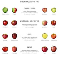 Which apples to use for what.  Though, I still like Cortland and Macs for eating, personally...