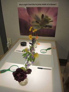 What might it feel like to jump inside of a flower? The Center for Children's Learning - Portland Children's Museum ≈≈