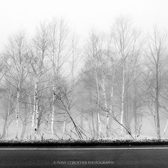 """Still... And listening. Lake Ashi Japan 
