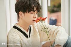 #TREASURE #ASAHI Thing 1, Korean Celebrities, Celebs, Yg Trainee, Im Going Crazy, Hyun Suk, Kpop, Flower Boys, Flower Images