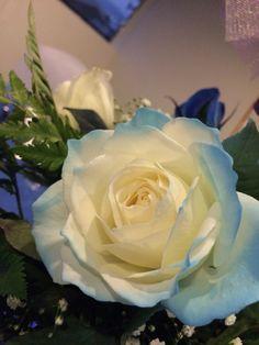 Rosas con tu color favorito