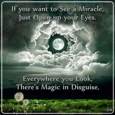 Everywhere you look there is Magic in disguise... :)