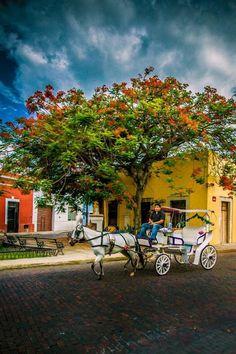 #Mérida es la capital y ciudad más poblada del estado de #Yucatán, mismo que se encuentra en #México. Está ubicada en el municipio homónimo que se encuentra en la Zona Influencia Metropolitana o Región VI de la entidad. La ciudad fue fundada el 6 de enero de 1542 sobre los vestigios de la ciudad maya llamada T'Ho, que se encontraba deshabitada cuando los europeos conquistaron la península de Yucatán. En 2000 la ciudad fue nombrada Capital Americana de la Cultura Tour By Mexico - Google+