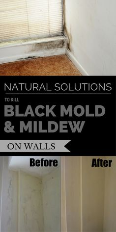 cleaning walls - Natural Solutions to Kill Black Mold & Mildew on Walls CleaningExpert net Diy Home Cleaning, Deep Cleaning Tips, Diy Cleaning Products, Cleaning Items, Spring Cleaning, Kill Black Mold, Remove Black Mold, Cleaning Painted Walls, Cleaning Walls
