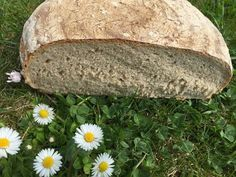 Backen mit Christina … | Bauernbrot mit Sauerteig Bread Baking, Food And Drink, Cooking, Recipes, Youtube Kanal, Baguette, Breads, Vegan, Facebook