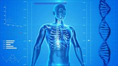 What is osteoporosis? Is osteoporosis a normal sign of aging? Does osteoporosis only affect women? Here's the truth: What you don't know about osteoporosis may… Health Tips, Health Care, Health Articles, Women's Health, Health Benefits, Human Body Facts, Endocannabinoid System, Bone Density, Fibromyalgia