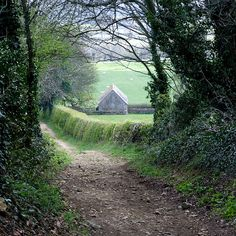 Down to the barn - Bredon Hill track, Worcestershire, England (by tina negus)