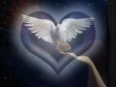 The Holy Spirit ~ Dove of Peace. Nirvana, Dove Images, Dove Pictures, Family Relations, Peace Dove, Peace Art, White Doves, World Peace, Divine Feminine